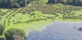 Lac Sud 01