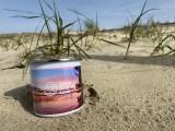 mug-email-1-2461965