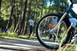 pistescyclables-christellemalvesin-otbiscarrosse-725709