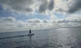 surf-electrique-bisca-lac-2727457
