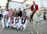 toro-chevaux-137982