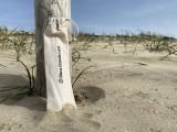 ustensile-plage-2-2461959