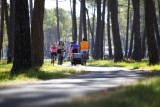 velo-biscarrosse-famille-pistes-cyclables-725710