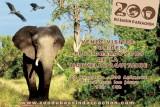 zoo-bassin-arcachon-4-14