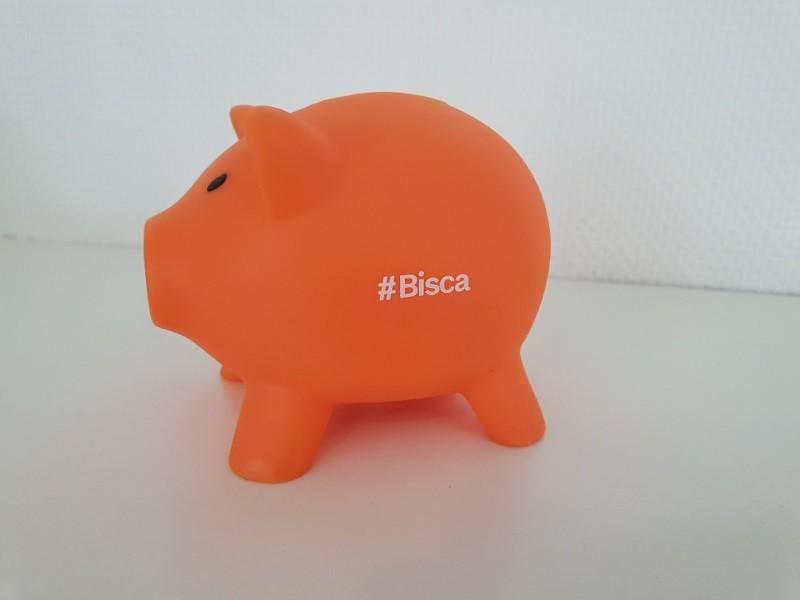 cochon-orange-659235