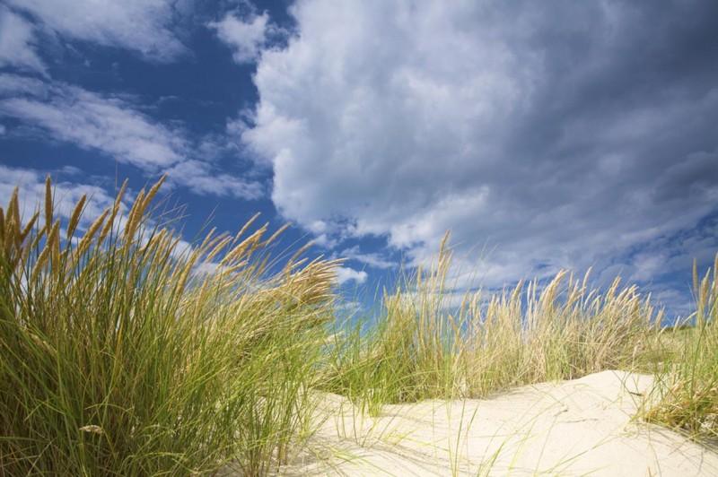 dune-et-ocean