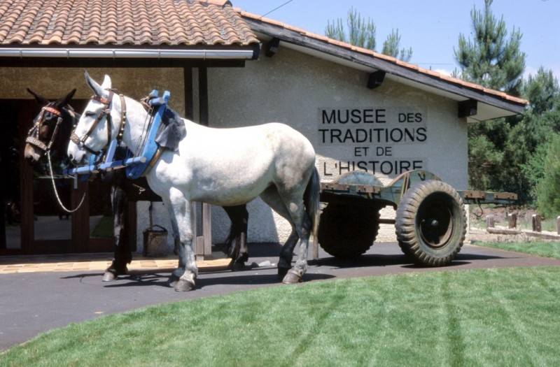 musee-12-27738