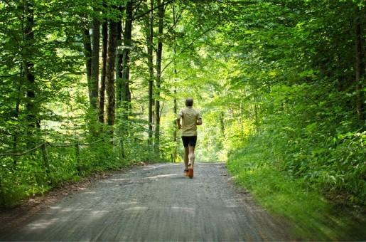 run_jog_sport_leisure_sporty_healthy_jogging_training-538457.jpg!s